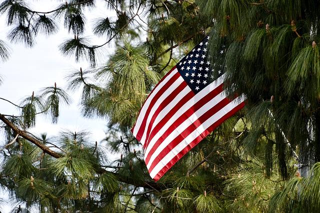 bandiera americana - election day